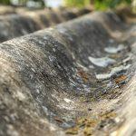BUZ: Als Welldach ist Asbest sofort erkennbar. Oft versteckt es sich aber in Fugen oder unter Böden. Die IG BAU will das gefährliche Material rasch aus dem Verkehr ziehen – per staatlicher Prämie. Foto: IG BAU