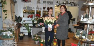 Farbenfrohe Blumenvielfalt und weihnachtliche Deko-Träume