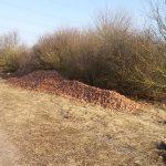 Nördlich der Ostumgehung wurden Zwiebelabfälle illegal entsorgt – die Stadt Lampertheim bittet um Hinweise. Foto: oh
