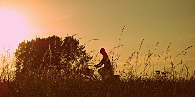 Mit dem Fahrrad in den Sonnenuntergang – auf der Familien-Erlebnisradroute im Ried ein wahrer Genuss. Foto: pixabay.com Foto: pixabay.com