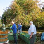 Erneut konnte das Team des Bauernmarkt Groß-Rohrheim dich die Apfel- und Quittenaktion die Mukoviszidose-Stiftung unterstützen. Foto: oh
