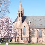 So wie die Magnolie vor der Domkirche soll auch die Lampertheimer Innenstadt bald wieder aufblühen – die FDP hat hierfür Ideen vorgestellt. Foto: Sigrid Samson