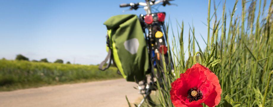 Mit dem Fahrrad etwas für sich, die Umwelt und das Klima tun: Dies ist beim Stadtradeln Möglich. Foto: www.pixabay.com