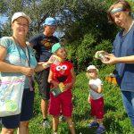 Gemeinsame Insektenbestimmung auf dem NABU-Gelände. Foto: oh