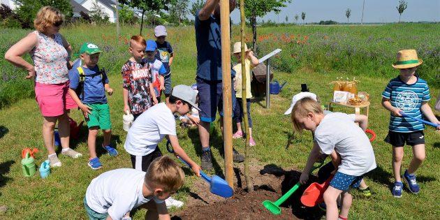 Der Kinderrechtspfad hat seine zweite Station: Die Vorschulkinder der Astronautengruppe halfen fleißig bei der Baumpflanzung im Ereigniswald mit. Foto: Petra Gahabka