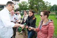 Eindrücke vom Winzerfest-Sonntag in Bockenheim 2019 003
