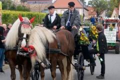 Eindrücke vom Winzerfest-Sonntag in Bockenheim 2019 017