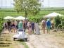 Osthofener Markt am Freitag und Tag der Türme am Sonntag