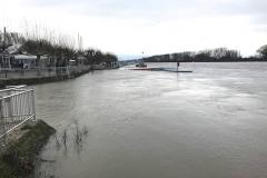 Rheinhochwasser am 7. Januar 2018 002