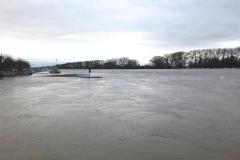 Rheinhochwasser am 7. Januar 2018 003