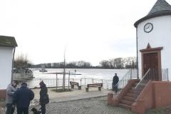 Rheinhochwasser am 7. Januar 2018 005