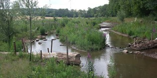 Monsheim: Weitere Landesmittel für Hochwasserschutz