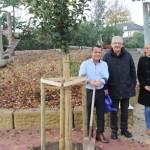 Bauabschnitt an Wiesoppenheimer Grundschule fertiggestellt