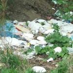 Umweltschonend Grillen ohne viel Müll