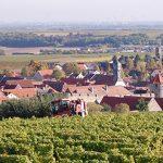 Blick auf das malerische Flörsheim-Dalsheim. Archivfoto: Gernot Kirch