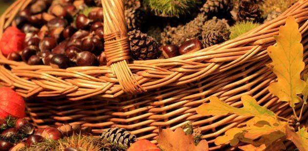 Traditionsveranstaltung in Monsheim feiert heute Jubiläum