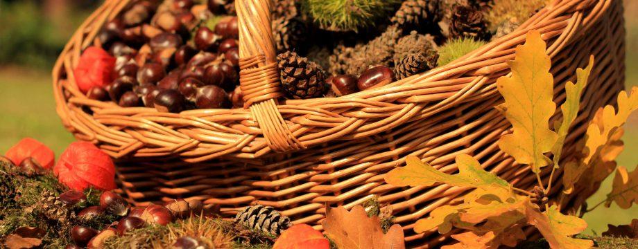 Traditionsveranstaltung der Verbandsgemeinde Monsheim feiert Jubiläum