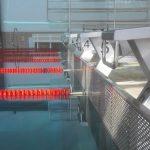 Schwimmstaffeln sorgen für Spannung