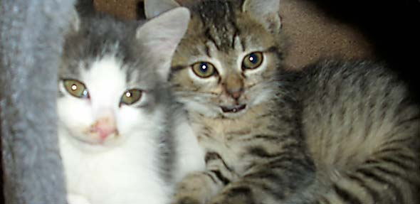 Philip und Jana würden gerne zusammen die Welt entdecken.
