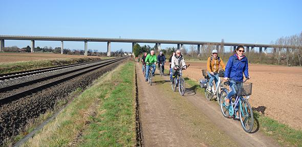 Radschnellweg von Pfeddersheim nach Pfiffligheim