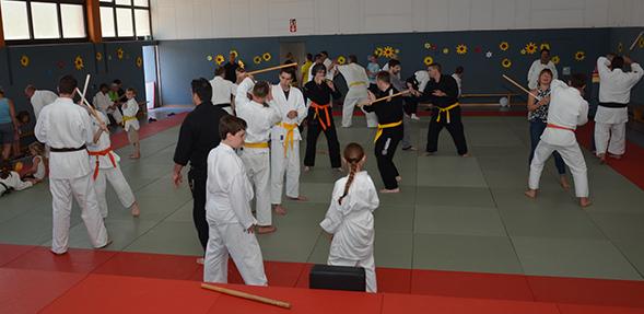 Zahlreiche Besucher nutzten die Gelegenheit, um beim Tag der offenen Tür den asiatischen Kampfsport kennenzulernen.