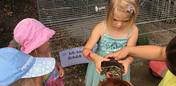 """Die Schildkröte """"Schildi"""" erfreute sich großer Aufmerksamkeit bei den Kindern."""