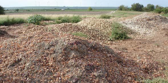 """""""Entsorgungskosten sparen zu Lasten der Allgemeinheit und Biotopflächen zerstören, das ist besonders rücksichtslos!"""", so Matthias Bösl. Der NABU hat die Kreisverwaltung unterrichtet."""