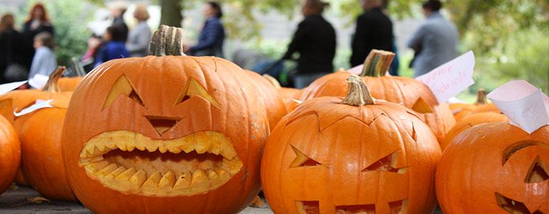 Kürbisschnitzereien dürfen beim Herbstmarkt am 7. und 8. Oktober im Tiergarten und Erlebnisgarten nicht fehlen.