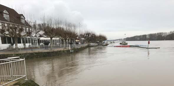 Der Rhein am Pegelhäuschen in Worms um 14.30 Uhr. Foto: Robert Lehr