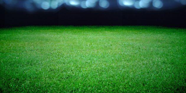 Wormatia Worms hat die letzten drei Spiele verloren und befindet sich nun unmittelbar im Abstiegskampf. Foto: twobee – 156674009 / Shutterstock.com