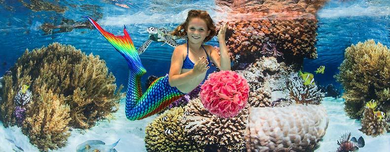 Einmal Meerjungfrau sein! – Der Traum kann jetzt wahr werden. Foto: Konstantin Killer