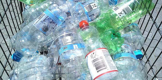 Günstige Preise der Discounter sorgen leider für reißenden Absatz von Einwegflaschen - trotz all ihrer Nachteile.