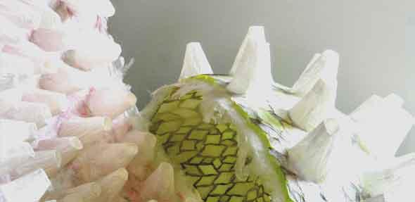 Anna Bludau-Hary bringt Papier mittels Kleister und Draht in Form