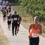 Die Läufer beim Panoramalauf in Monsheim und Kriegsheim.