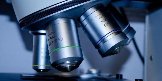 Auch wenn es schon etliche Studien zu den Wirkungen und Nebenwirkungen von CBD gibt, sind die Produkte noch immer Gegenstand aktueller Forschungen. Foto: PublicDomainPictures/Pixabay.com