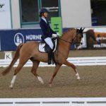 Die 14 jährige Lena Rex erreichte mit ihrem Dressur-Pony Disney Dancer zwei Mal den 6. Platz auf dem Mannheimer Maimarkt. Sie reitet für den RSG Worms Pfeddersheim und war in der internationalen Pony Tour unterwegs.