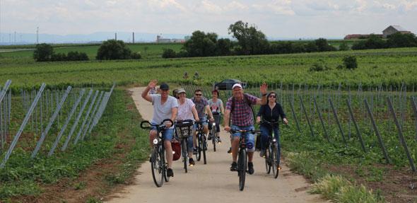 Radfahren, wandern und das ein oder andere Glas Wein gaben bei sonnigem Wetter allen Anlass zur Freude bei den Besuchern der Trullo-Radwanderung. Foto: Julia Helwig