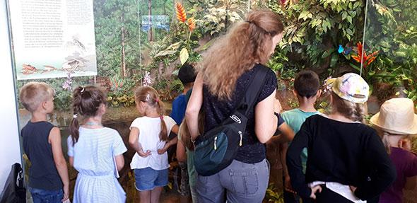 Im Nibelungenmuseum erkundeten die 20 teilnehmenden Kinder im Alter von sechs bis elf Jahren die Tier- und Pflanzenwelt.
