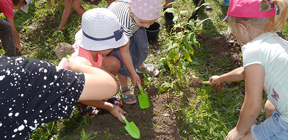 Die Kinder hoben Pflanzenlöcher aus und setzten verschiedene Pflanzen ein.
