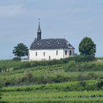 Die St. Michaels-Kapelle, umgeben von Weinreben, befindet sich auf dem Klausenberg bei Abenheim.