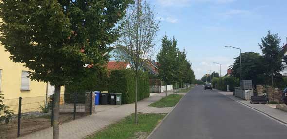 """Die Ortsgemeinde Alsheim bittet um """"Wasserspenden"""" für die örtlichen Bäume und Sträucher."""