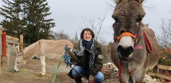 Die Esel Max und Emil freuen sich auf die Wanderung.