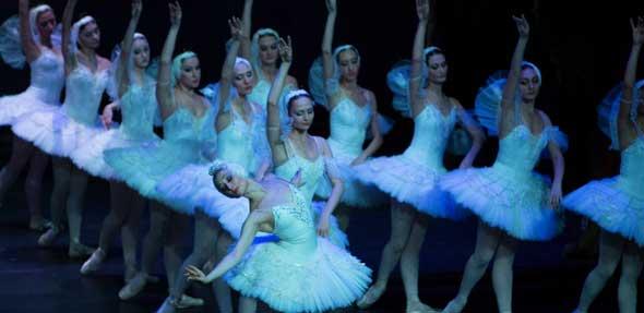 """""""Schwanensee"""": Das meist getanzte Ballett kommt ins Wormser Theater. Foto: Barbara Reiter"""