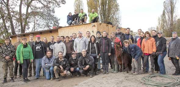 Dank vieler fleißiger Helfer können die Gnadenhoftiere ihre neuen Stallungen beziehen.