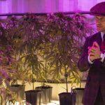 Der reiche Drogenbaron Michael will aus dem Geschäft aussteigen, doch ist das überhaupt möglich? Foto: Universum/Concorde