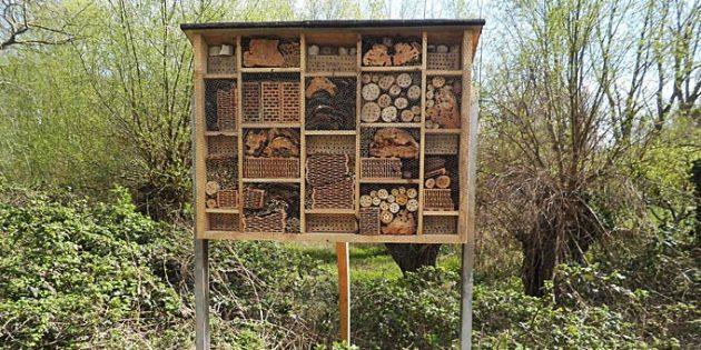 Am Rand des Hammer Wörths steht das neue Insektendomizil.