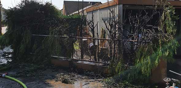 Die abgebrannte Thujahecke. Foto: Polizei